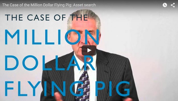 The Case of the Million Dollar Flying Pig. Video. Martin Investigative Services. (800) 577-1080